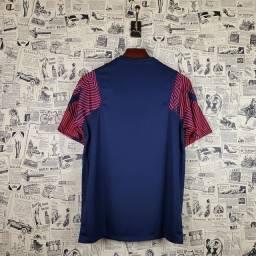 camiseta treino PSG nike