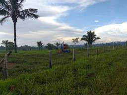 Fazenda à venda, por R$ 2.645.000 - Zona Rural - Machadinho D'Oeste/RO