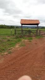 Fazenda em Buritis-MG