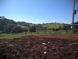 Fazenda 79 alqueires Pontalina-GO
