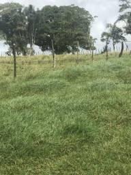 Vendo terreno para Gado