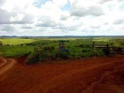 Fazenda à venda, por R$ 105.000.000,00 - Altamira/Pará