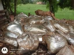 Saco de 50 kg de silagem de milho