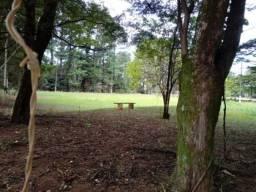 Chácara para alugar em Chacara flora araraquara, Araraquara cod:L98878