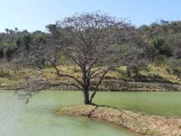 Linda Fazenda 2ha em Condomínio, Duas Lagoas na Porta. 90 mil mais Parcelas