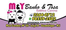 M&Y Banho e Tosa - Agora com Veterinário preço popular R$:60,00
