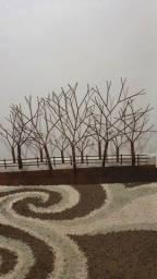 Escultura parede