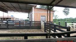 Rancho top. município Bujari acre
