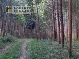 Chácara à venda em Araçatuba, Imbituba cod:156