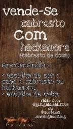 Cabrestos e Hackamore