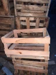 Caixa madeira para mudas café