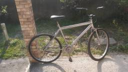Título do anúncio: Bicicleta prata metálica .