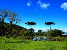 Belíssimo Sítio/Chácara com 54 hectares em Rio Rufino com vista panorâmica 360 graus
