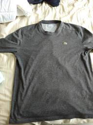 Camisas originais de marca usadas