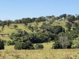 Fazenda Goiás Velho 170 km de Goiânia 64.9alqueires