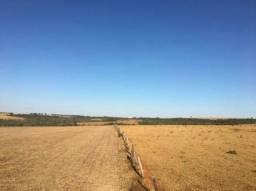 Fazenda barata de soja