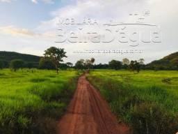 Fazenda 62 Alqueirao Pecuaria Terra de Cultura