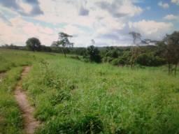 Fazenda entre Gurupi e duere 263alqueires