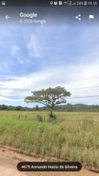 Arrendamento 2 hectares
