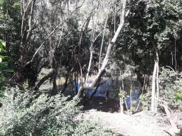 Venda de Cada em Guarapari