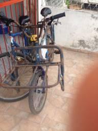 Bicicleta de carga no grau