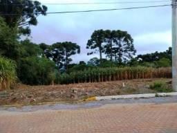 Terreno em Nova Petrópolis na localidade de Pinhal Alto
