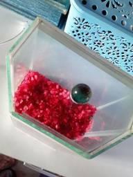 Aquário peixe beta