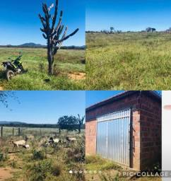 Vende se Fazenda em Jaguarari-BA, 400 tarefas(800,00 por tarefa)
