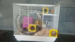 Gaiola para hamster chinês