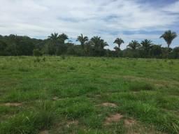 Fazenda 677 hectares barra do buguês