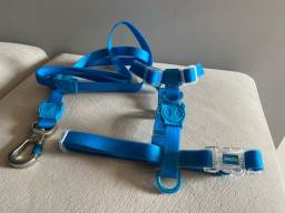 Coleira Zeedog neopro Azul