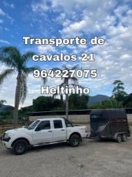 Título do anúncio: Transporte / Frete de Cavalos para todo Brasil