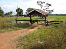 Vende se uma Fazenda  á 17 KM de Porto Velho-RO