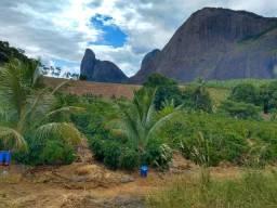 Título do anúncio: Sítio medindo 16 hectares, em Lajinha - Pancas /ES