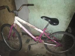 Bicicleta 100,00
