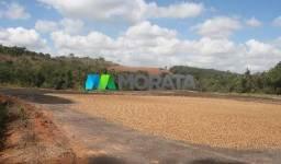 FAZENDA A VENDA - 470 hectares - SANTO ANTÔNIO DO AMPARO (MG)