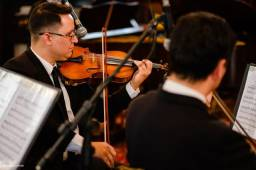 Aulas de violino, viola, violoncelo e contrabaixo