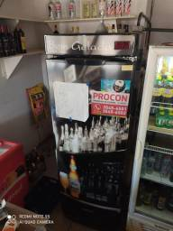 Freezer vertical gelopar