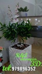 Vasos de planta
