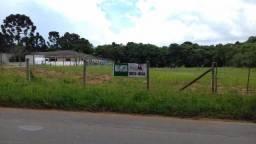 Terreno para alugar, 9611 m² por R$ 2.500,00/mês - Umbará - Curitiba/PR