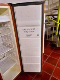 Freezer vertical consul slim