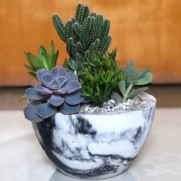 Vendo vasos de concreto (com e sem plantas)