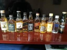 Kit com 10 garrafas mini de variadas bebidas Vodka/Whisky
