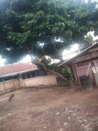 terreno quiririm centro 275m2 com uma casa simples antiga
