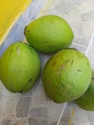 Coco organico