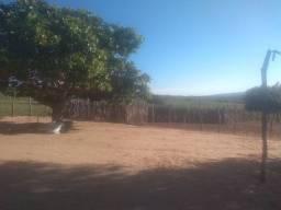 Terreno em ibimirim Pernambuco
