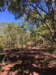 Fazenda à venda em Correntina BA com 4.000 hectares.