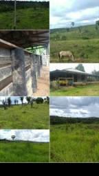 Propriedade rural (fazenda)