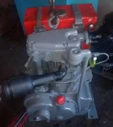 Motor Agrale M85 Especial