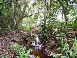Sítio 2,0 hectares com água, rede de energia, 18 km de Uberlândia MG